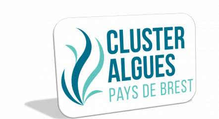 clusteralgues Pays de Brest1